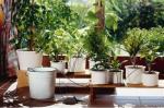 Система автоматического микрокапельного полива Gardena для горшечных растений